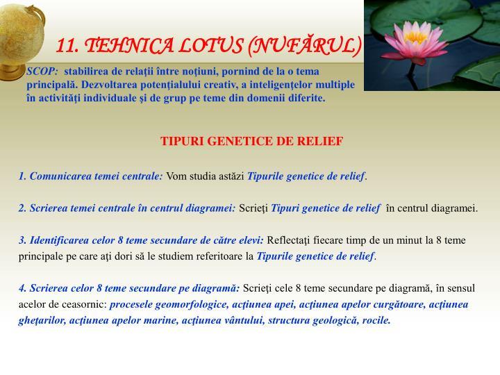 11. TEHNICA LOTUS (NUFĂRUL)