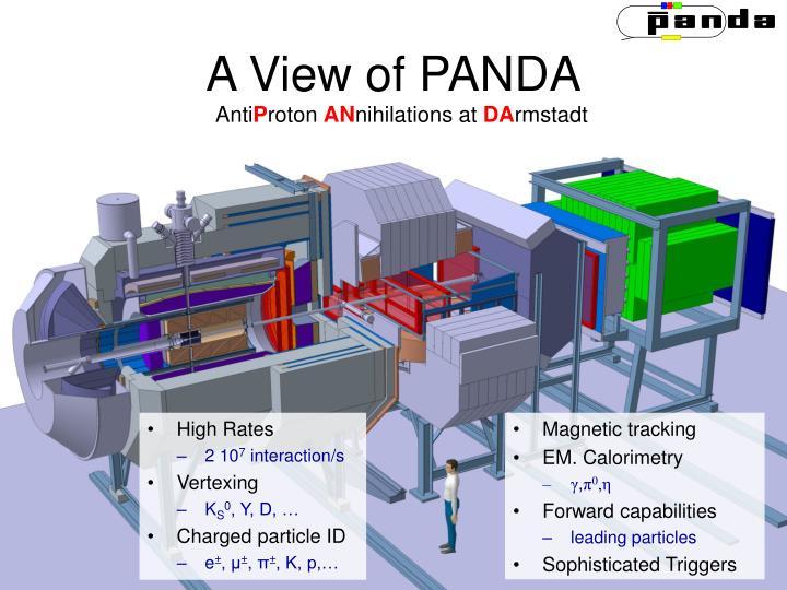 A View of PANDA