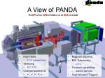 a view of panda1