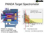 panda target spectrometer