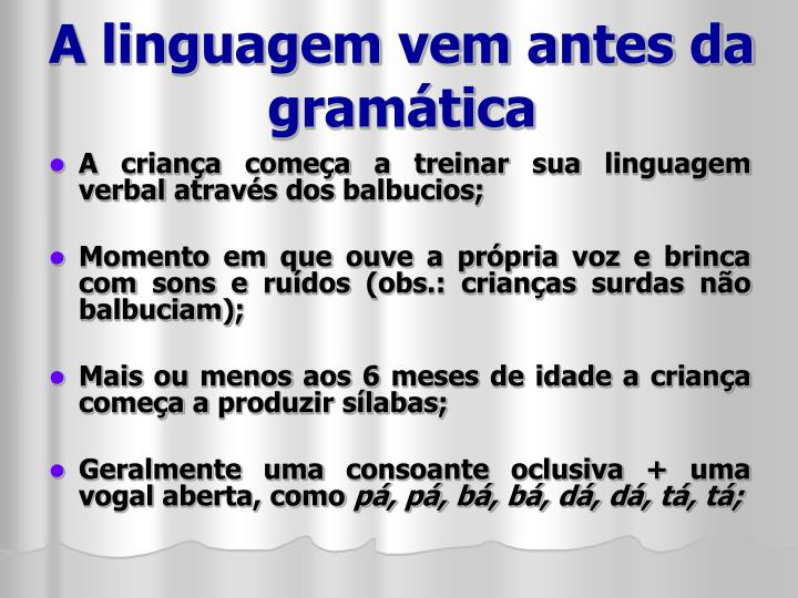A linguagem vem antes da gramática