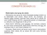ms excel concepte de baz 12