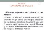 ms excel concepte de baz 16