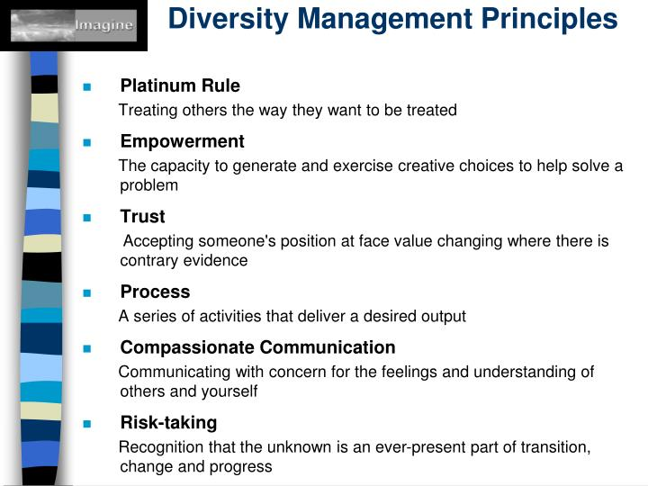 Diversity Management Principles
