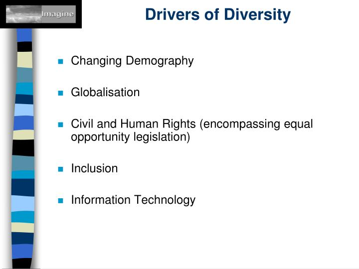 Drivers of Diversity