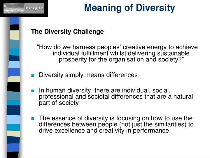 Meaning of Diversity