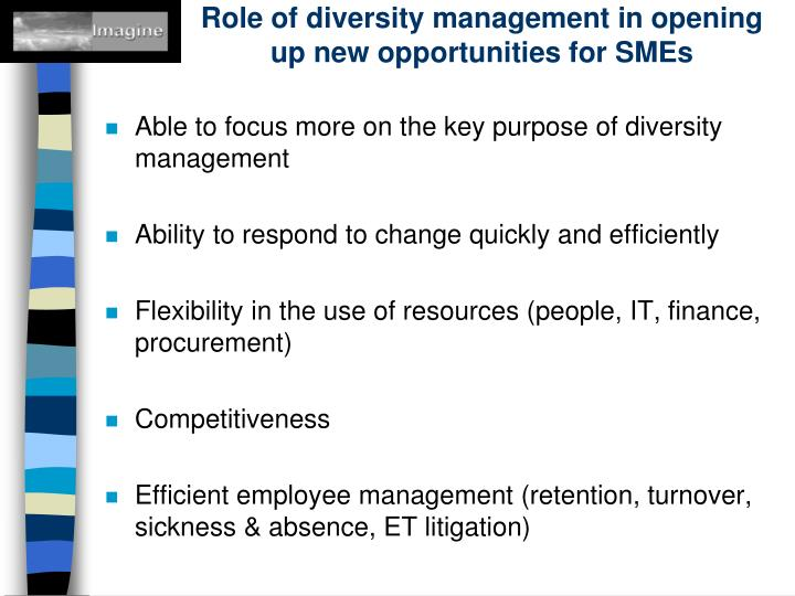 Role of diversity management in opening up new opportunities for SMEs