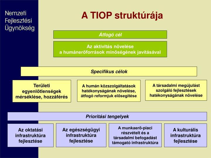 A TIOP struktúrája