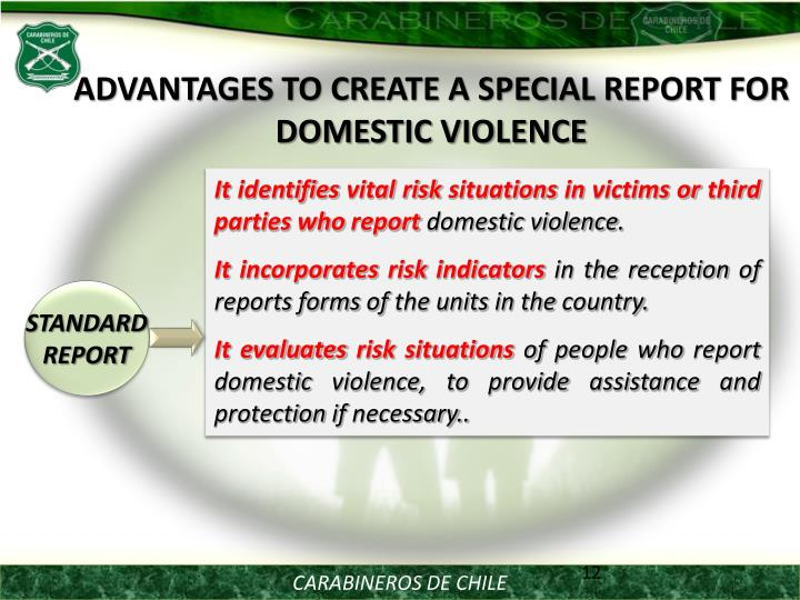 ADVANTAGES TO CREATE A SPECIAL REPORT FOR DOMESTIC VIOLENCE
