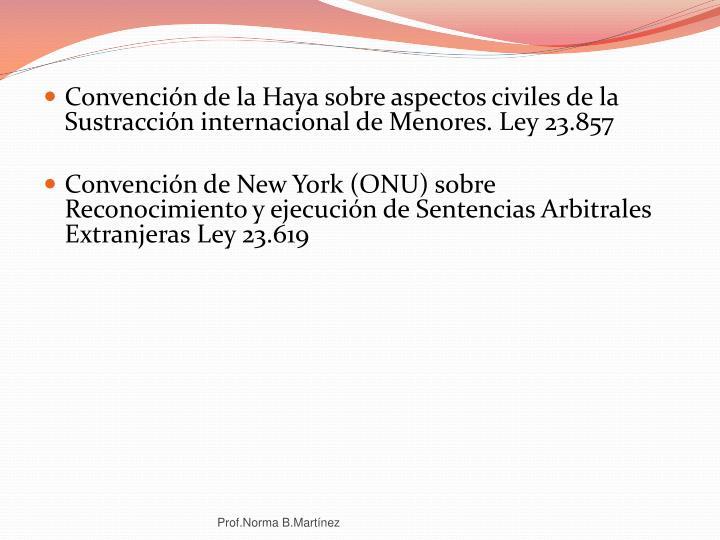 Convención de la Haya sobre aspectos civiles de la Sustracción internacional de Menores. Ley 23.857
