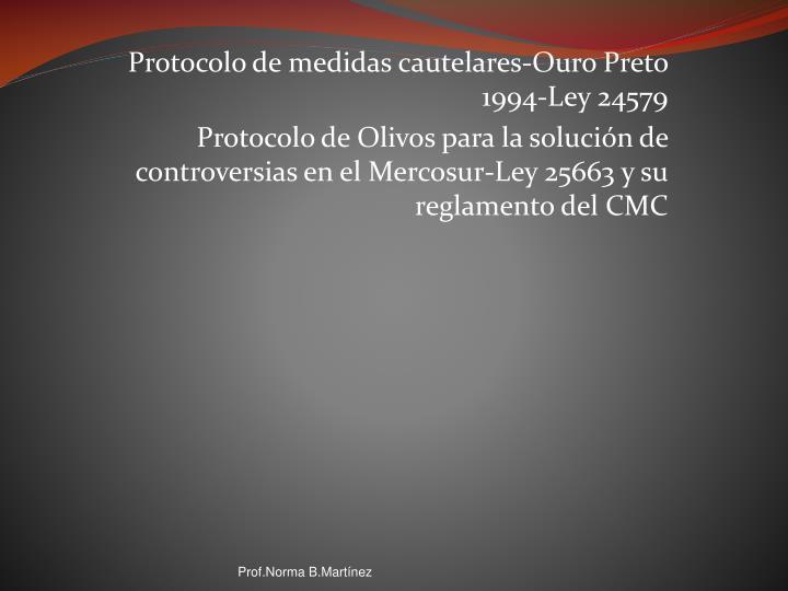 Protocolo de medidas cautelares-Ouro Preto 1994-Ley 24579
