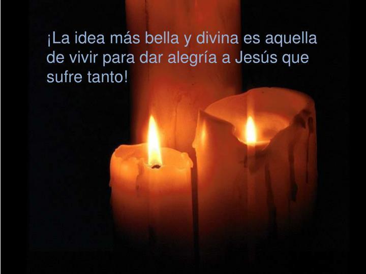 ¡La idea más bella y divina es aquella de vivir para dar alegría a Jesús que sufre tanto!