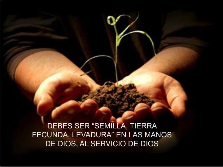 """DEBES SER """"SEMILLA, TIERRA FECUNDA, LEVADURA"""" EN LAS MANOS DE DIOS, AL SERVICIO DE DIOS"""