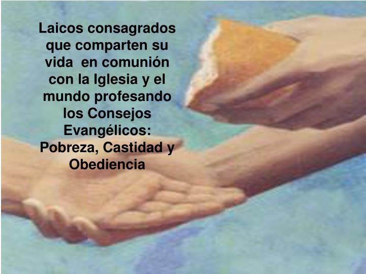 Laicos consagrados que comparten su vida  en comunión con la Iglesia y el mundo profesando los Consejos Evangélicos: Pobreza, Castidad y Obediencia