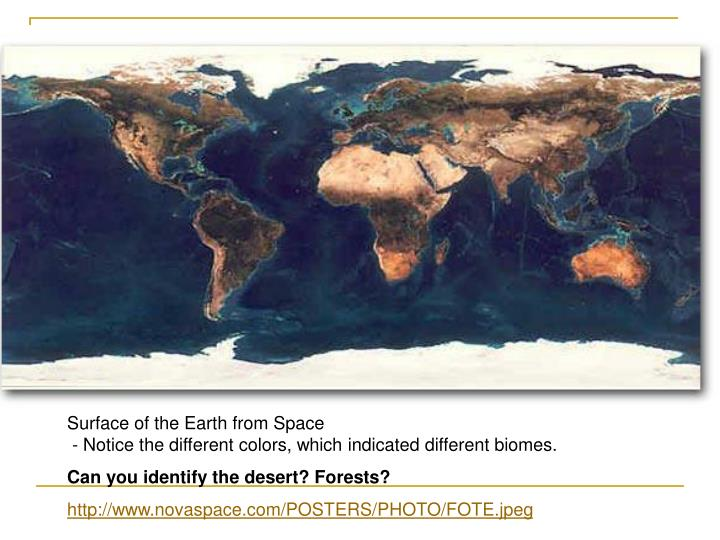 Surface of the Earth from Space