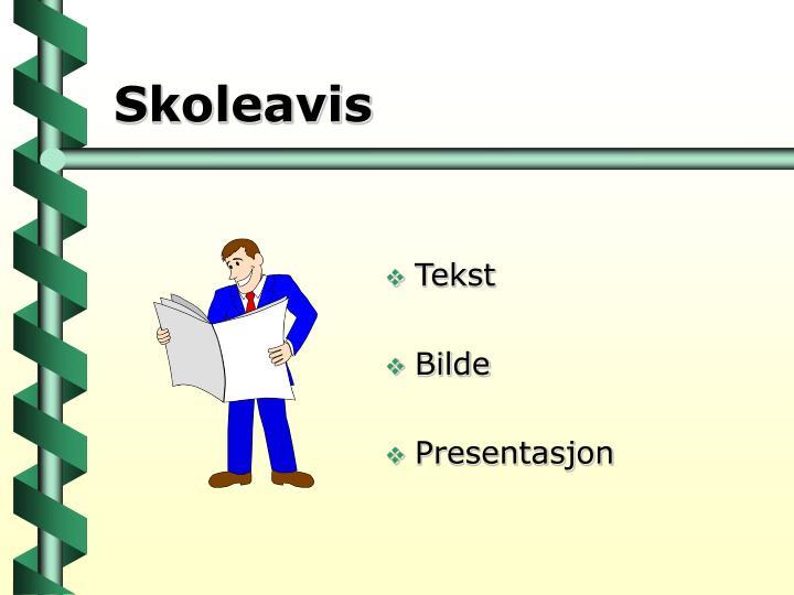 Skoleavis