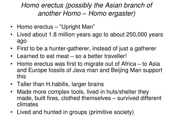 "Homo erectus – ""Upright Man"""