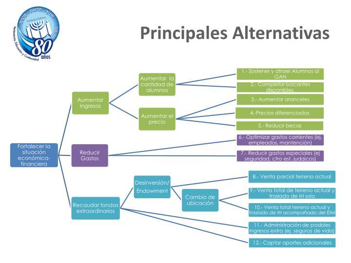 Principales Alternativas