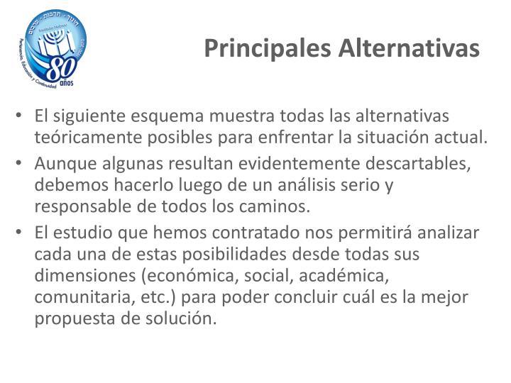 El siguiente esquema muestra todas las alternativas teóricamente posibles para enfrentar la situación actual.
