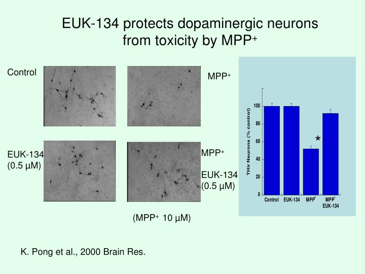 EUK-134 protects dopaminergic neurons