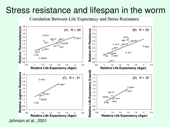 Stress resistance and lifespan in the worm