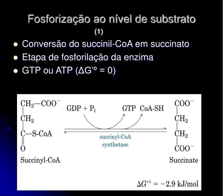 Fosforização ao nível de substrato