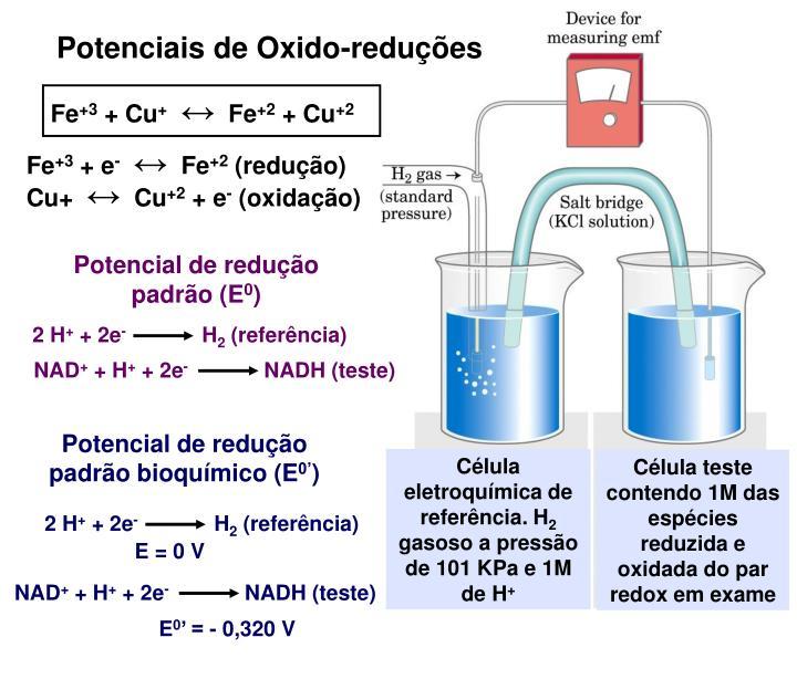 Potenciais de Oxido-reduções