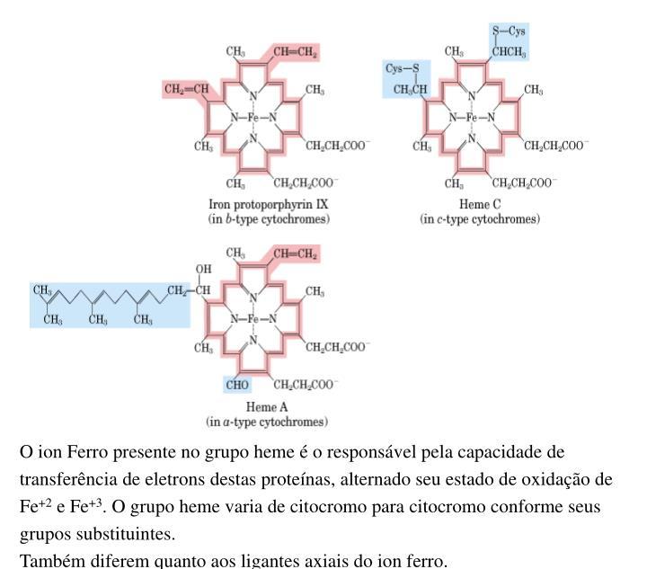 O ion Ferro presente no grupo heme é o responsável pela capacidade de transferência de eletrons destas proteínas, alternado seu estado de oxidação de Fe