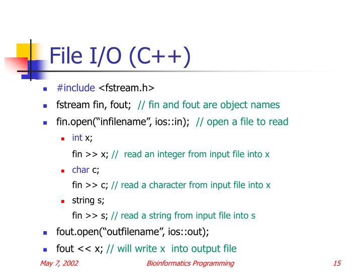 File I/O (C++)