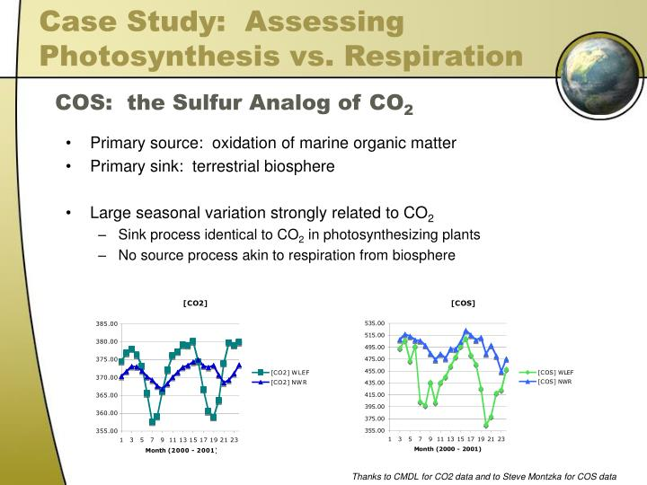 Case Study:  Assessing Photosynthesis vs. Respiration