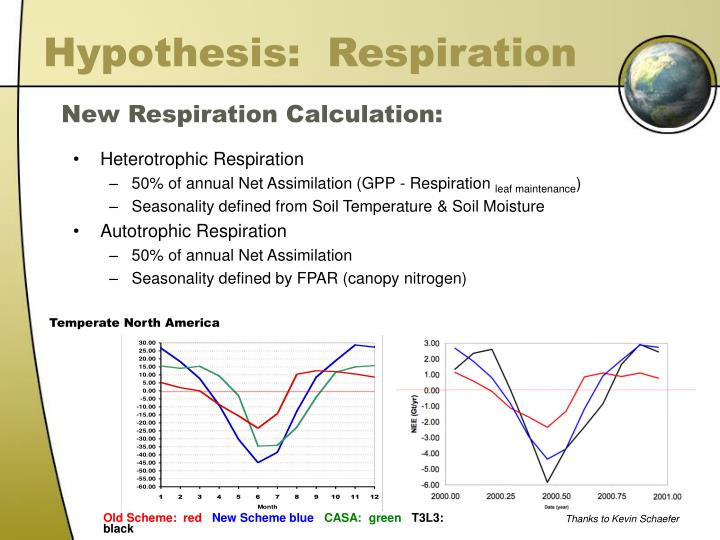Hypothesis:  Respiration