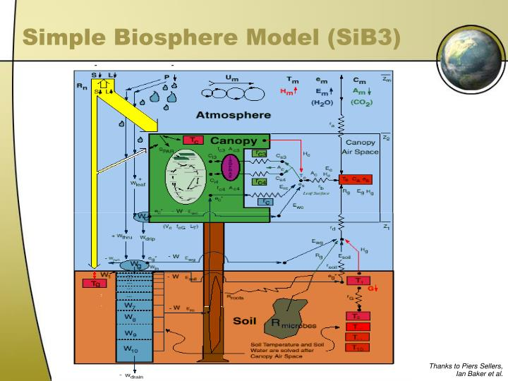 Simple Biosphere Model (SiB3)