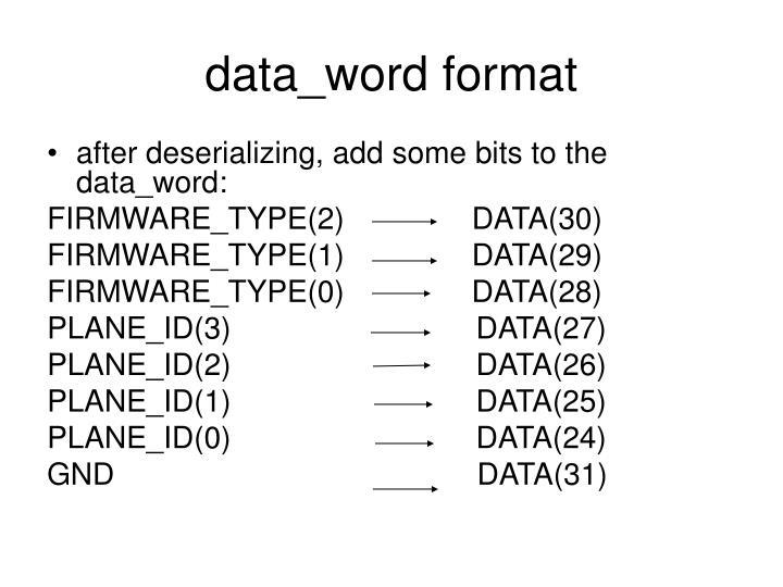 data_word format