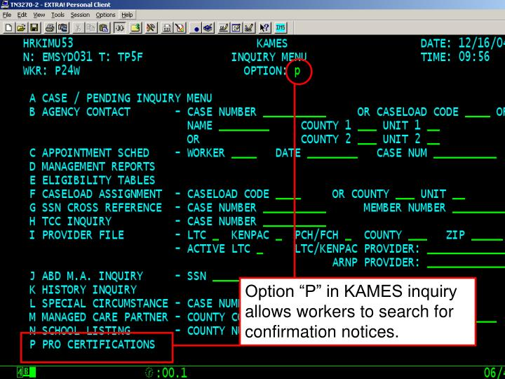 "Option ""P"" in KAMES inquiry allows workers to search for confirmation notices."
