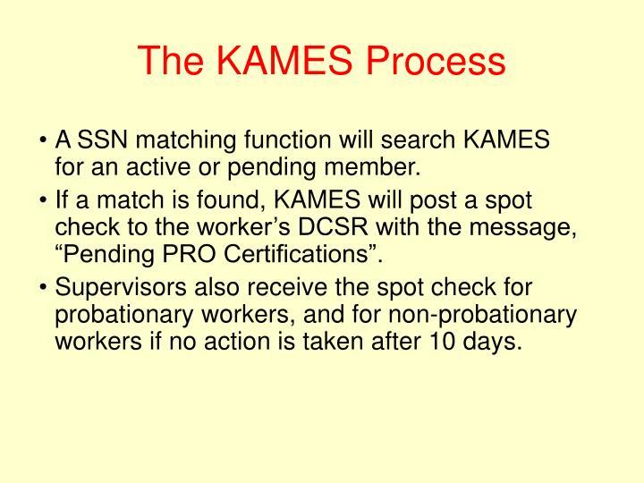 The KAMES Process