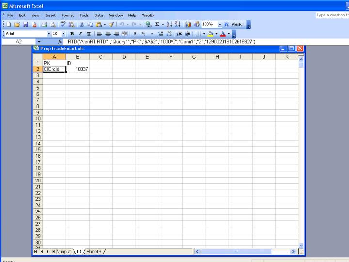 Excel RT