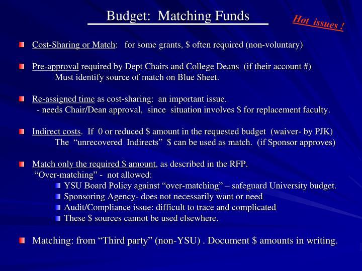 Budget:  Matching Funds