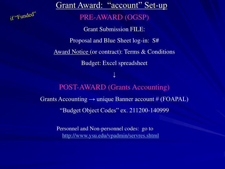 """Grant Award:  """"account"""" Set-up"""