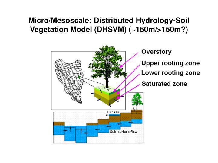 Micro/Mesoscale: