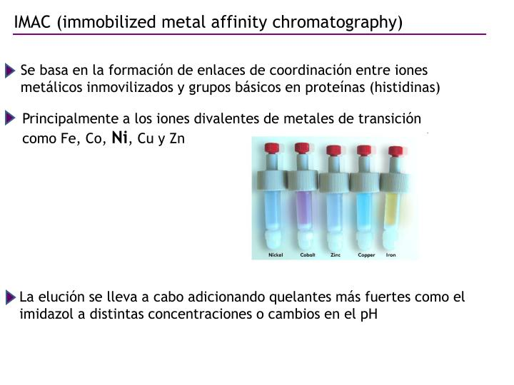 IMAC (immobilized metal affinity chromatography)