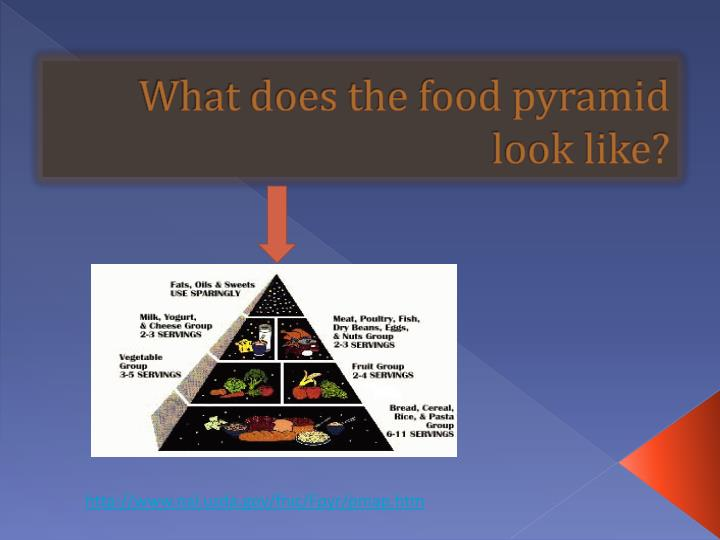 What does the food pyramid look like