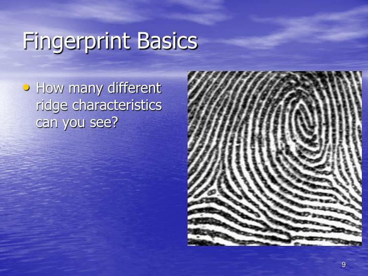 Fingerprint Basics