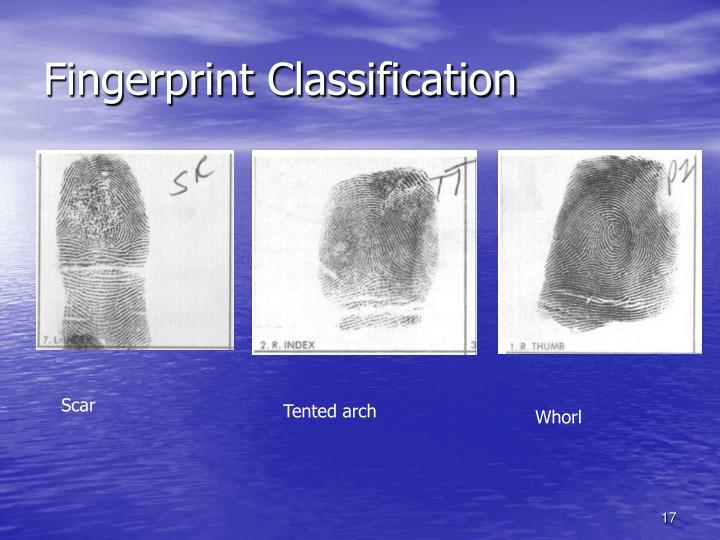Fingerprint Classification