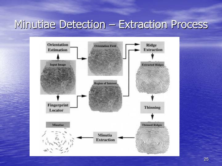 Minutiae Detection – Extraction Process