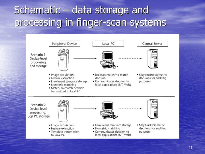 Schematic – data storage and processing in finger-scan systems