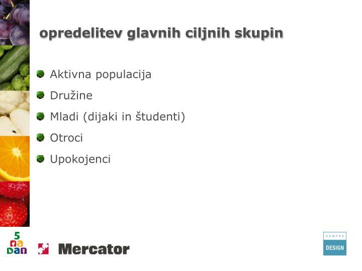 opredelitev glavnih ciljnih skupin