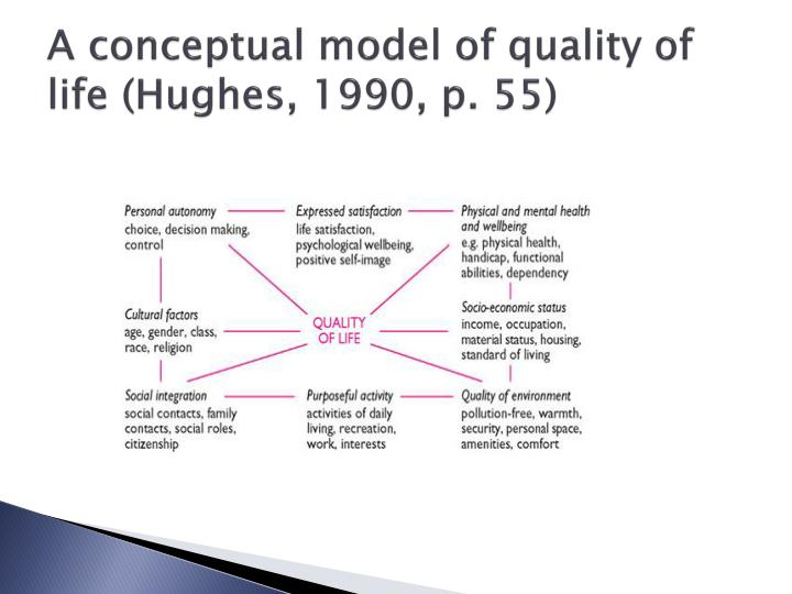 A conceptual model of quality of life (Hughes, 1990, p. 55)