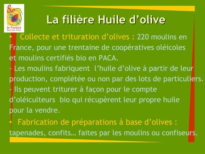 La filière Huile d'olive