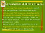la production d olives en france