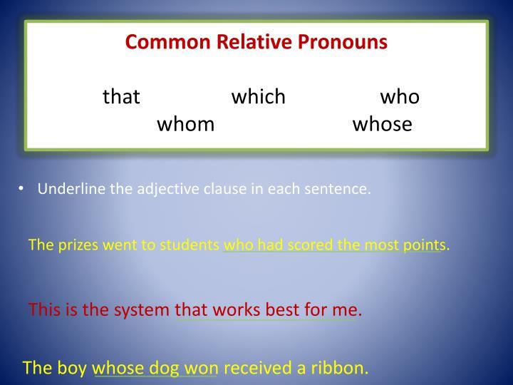 Common Relative Pronouns
